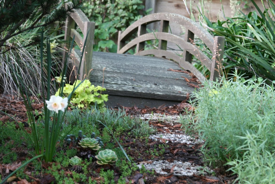 Can you explain the whole dry creek thing to me? Garden Design Dry Stream Bridge on dry stream landscape, wooden deck garden, gully garden,