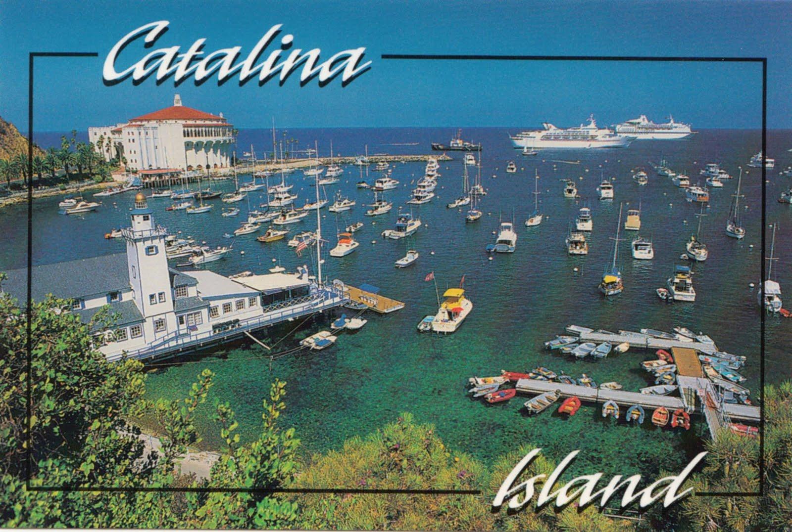 Amanda From Seattle Mondays Postcard Catalina Island - Catalina cruises