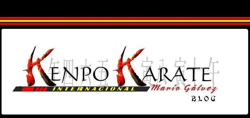 Kenpo Karate Mario Galvez Blog
