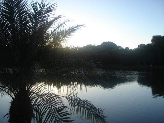 Lago do Parque Areião de Goiânia