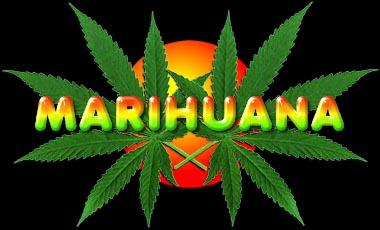 La Marihuana .