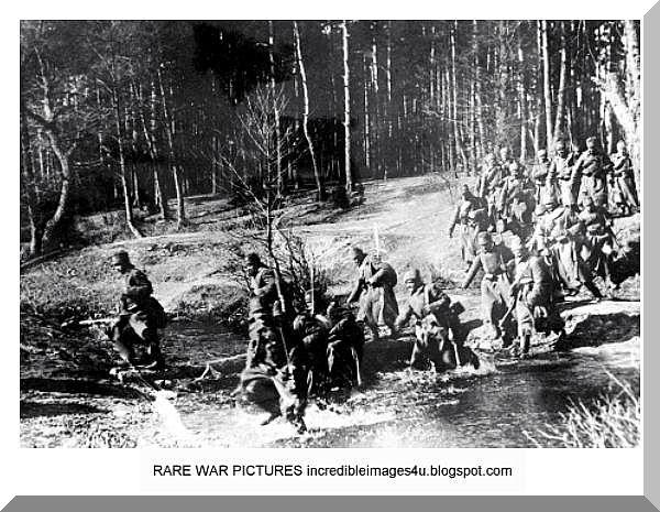 the german army after ww1 essay