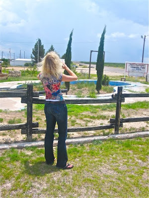 Musings of an artist 39 s wife crossing west texas and the moo cow blues for Swimming pool in fort stockton tx