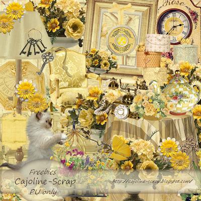 http://cajoline-scrap.blogspot.com/2009/09/freebie-kit-maison-jaune-99-elts-en-pu.html