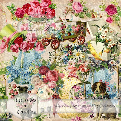 http://cajoline-scrap.blogspot.com/2009/10/freebie-12-tubes-psp-fleurs-victorien.html