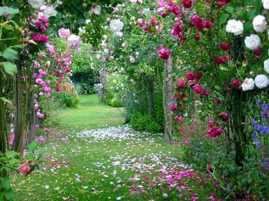 http://3.bp.blogspot.com/_oKjxIRnQHG8/SERYaikWpjI/AAAAAAAAAxU/mMr-0satdOM/s400/jardins-meninamarotablog.jpg