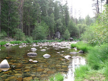 Wawona River