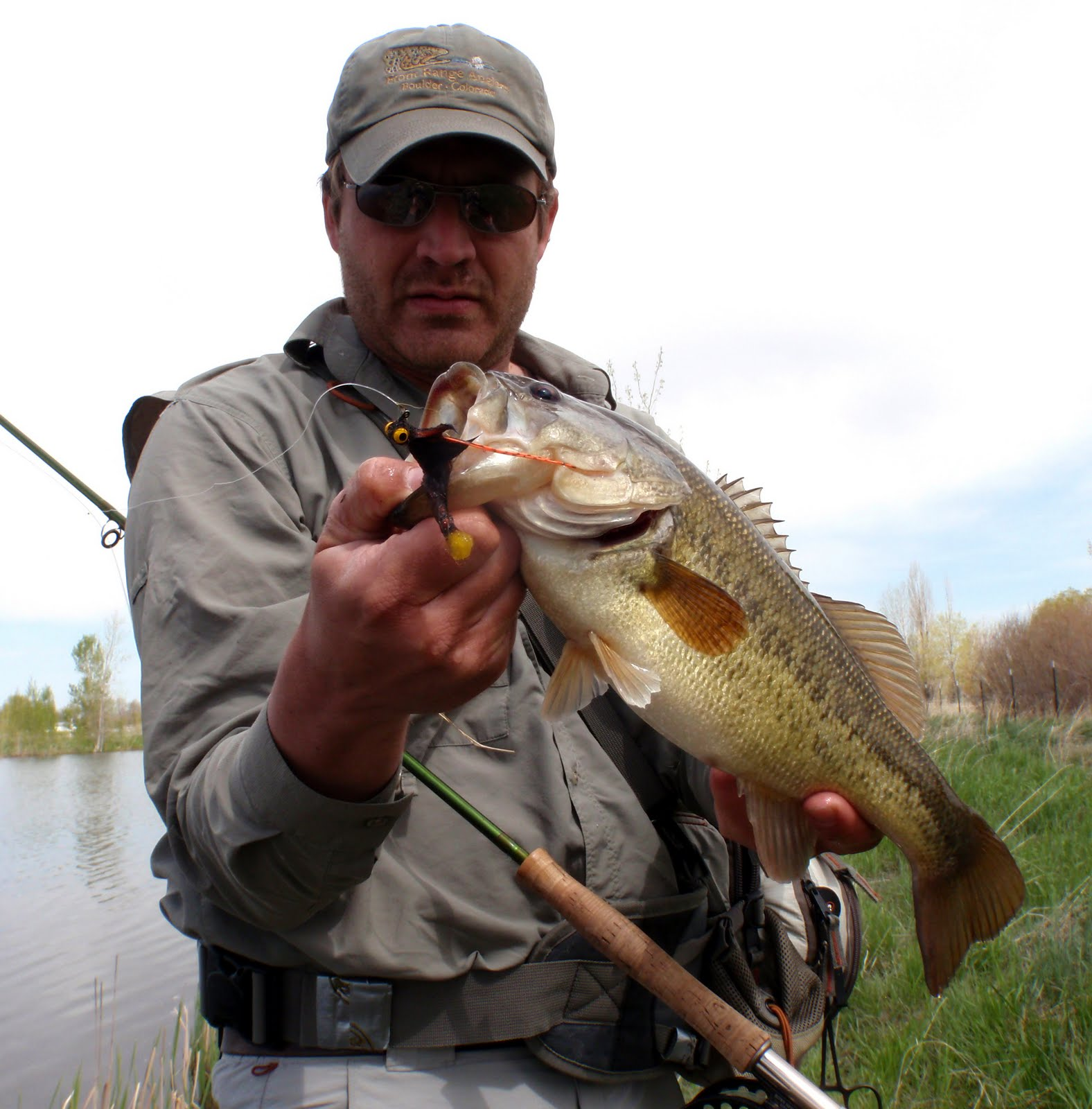 Colorado fly fishing reports warmer water brings better bass for Bass fishing in colorado