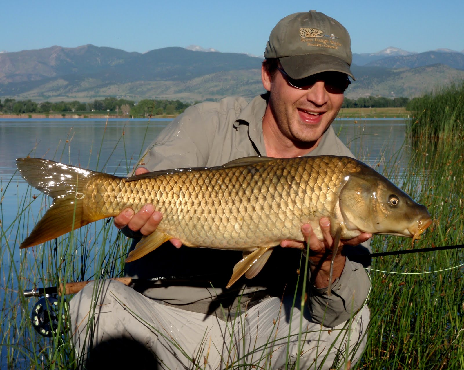 Colorado fly fishing reports carp fishin 39 is gettin 39 hot for Fly fishing carp