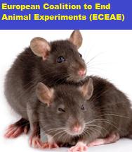 Gegen Tierversuche