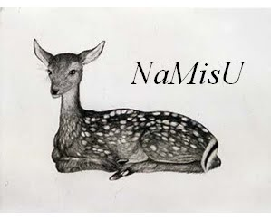 NaMisU