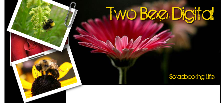 Two Bee Digital