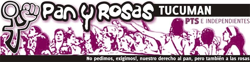 Pan y Rosas Tucumán