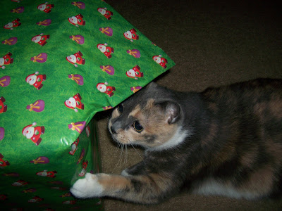 she plays with it everyday, slowly unwrapping it.  i guess it is hers until christmas.