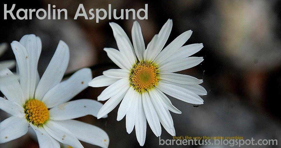 Karro Asplund