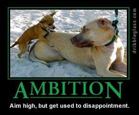 HMRC Ambition