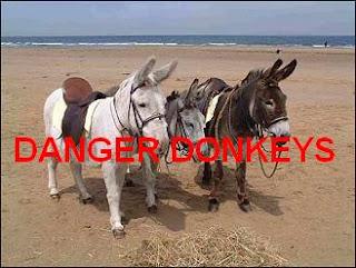 Nanny Bans Donkey Derby
