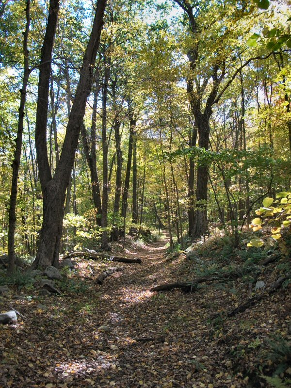 Bolt State Park Rhode Island