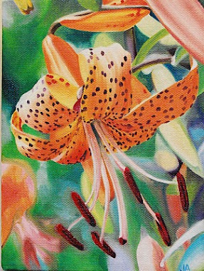 lilly for lily