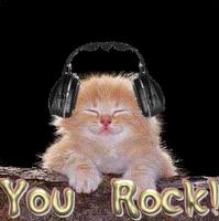 You Rock Kitty