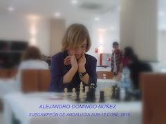 ALEJANDRO DOMINGO