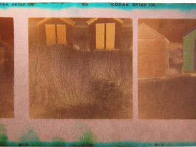Negative from a Diana Clone. Photograph by Tim Irving