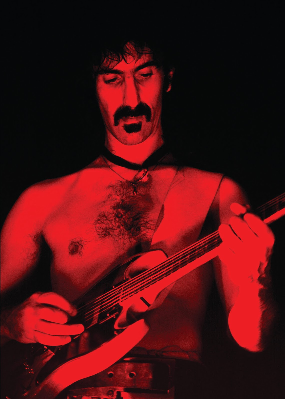 an introduction to the life of frank zappa Unlike most editing & proofreading services, we edit for everything: grammar, spelling, punctuation, idea flow, sentence structure, & more get started now.