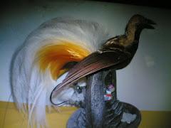 Burung Kayangan,, Candra wasih jantan,, tino buek apo,, ( link to : http://www.antiquecyrus.com.my