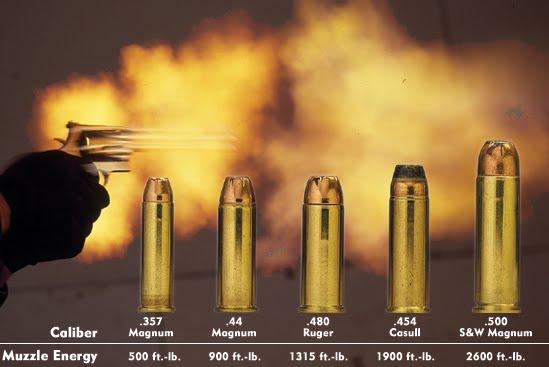 Smith+and+wesson+50+caliber+handgun