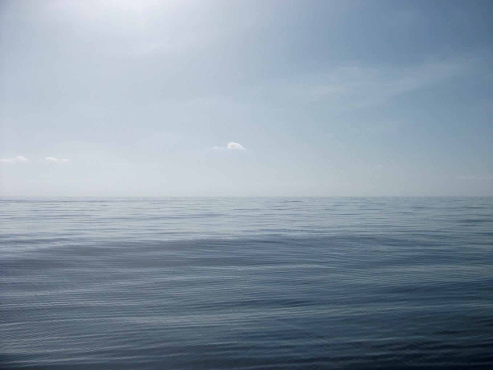 Mrs. Babicki-Teacher at Sea: Hot Day, Calm Seas