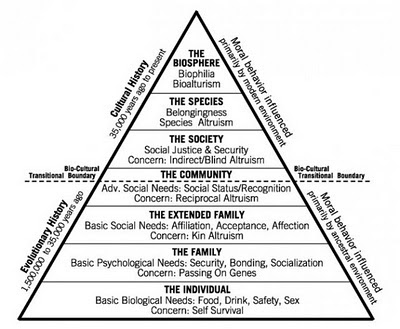 hierarchy of needs. Shermer#39;s Hierarchy of Needs