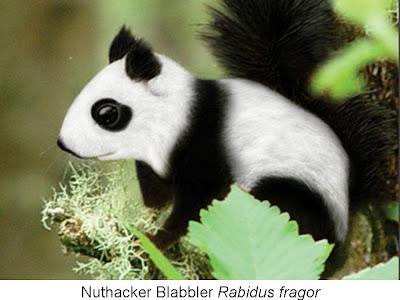http://3.bp.blogspot.com/_ocC93vAmonA/ScpZigbEgeI/AAAAAAAABV0/tUgu8vrxpY0/s400/Funny+squirrel+panda.jpg