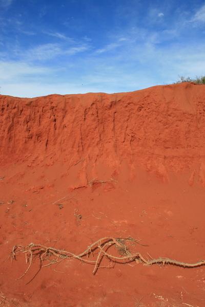 Red Earth Francois Peron Western Australia - © CKoenig