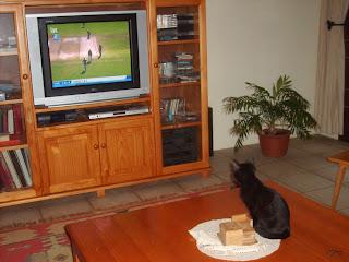 pepsi watches IPL
