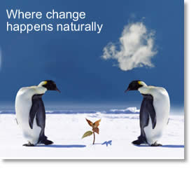 image: where change happens naturally