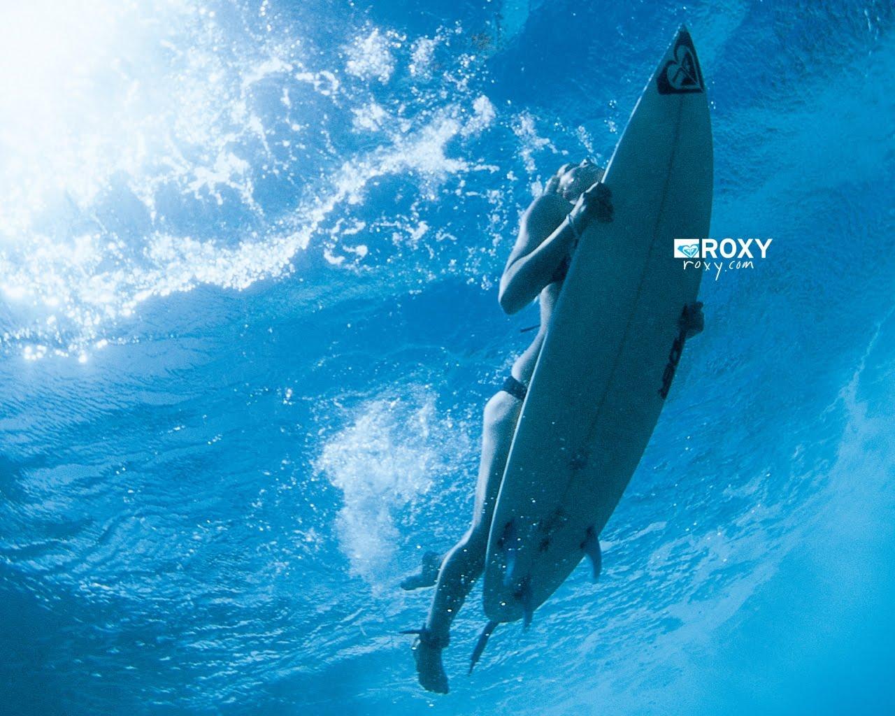 http://3.bp.blogspot.com/_of9m8NxT-ZA/TUWebB8zbDI/AAAAAAAAAq4/qC1hIr0inPA/s1600/Roxy-Wallpaper-Duck-Dive-670171.jpg