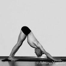 Adho Mukha Svanasana--Downward Facing Dog