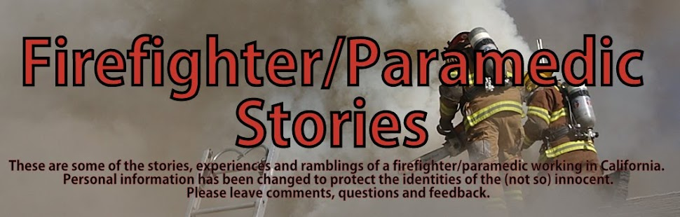 FIREFIGHTER/PARAMEDIC STORIES