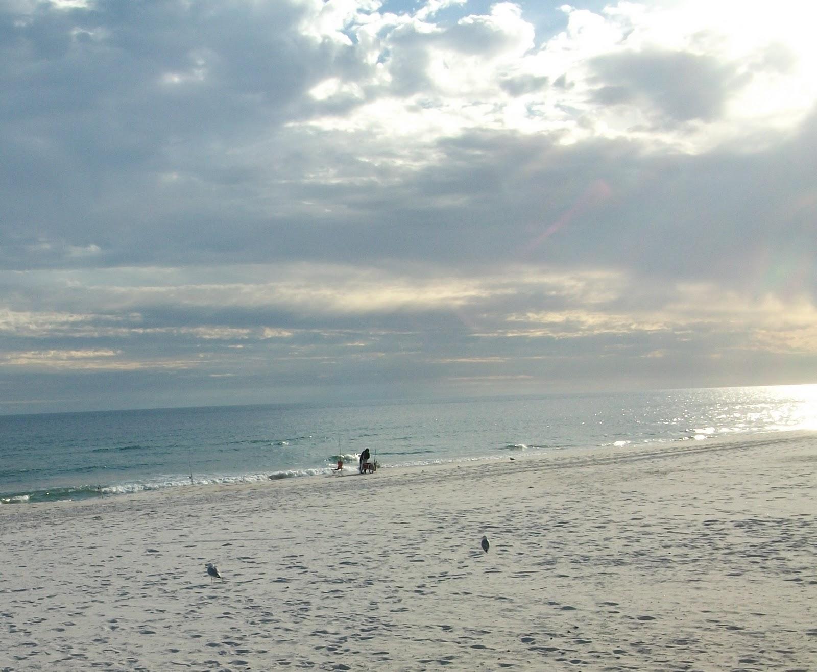 Wherewegougo2 a new year in alabama january 2011 for Perdido key fishing