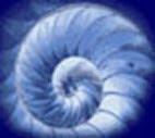 EL LABERINTO DE ARIADNA (Colectivo de Escritor@s)
