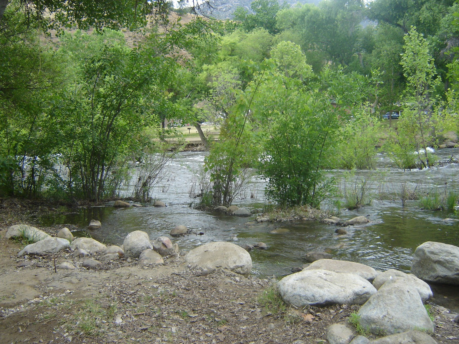 Life and times on stevely ave camping kern river for Kern river fishing spots