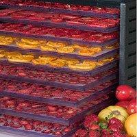 Productos Deshidratados. Frutas y Hortalizas. Maquinas p/ Fabricar