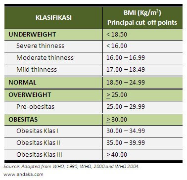 4 Penyebab Obesitas yang Perlu Anda Tahu