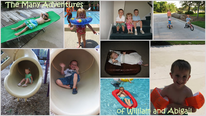 The Many Adventures of William and Abigail