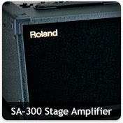 Roland Stage Amps