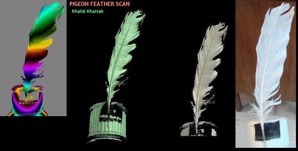 laser scanning  pigeon feather scan