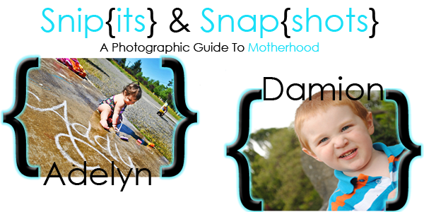 Snip[its] & Snap{Shots}