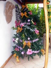 Tico Tree