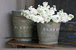 English Galvanized Zinc Florist's FLOWER Buckets