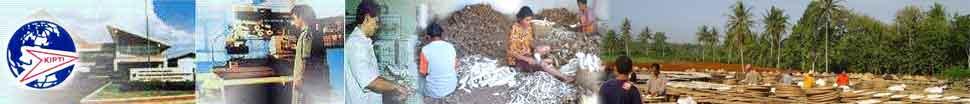 Kipti  produksi  tepung mocaf